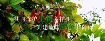 生物多样性 |【NO.171】红河约您一起迎COP15盛会 每天一物开启红河生物多样性之门