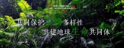 COP15【NO.209】每天一物开启红河生物多样性之门