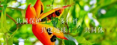 COP15【NO.217】每天一物开启红河生物多样性之门