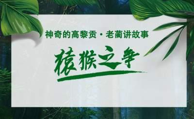 【网聚云南相约COP15】 神奇高黎贡|老蔺讲故事·猿猴之争