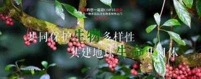 COP15【NO.215】每天一物开启红河生物多样性之门
