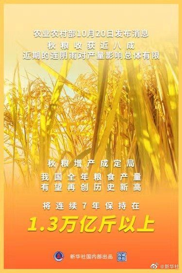 权威快报丨农业农村部:秋粮增产已成定局