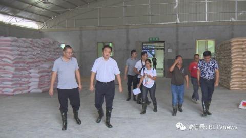 瑞丽市委书记龚云尊调研生猪产业生产经营情况