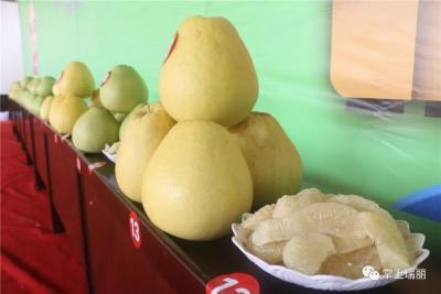 【欢庆丰收】暖心!弄岛镇第四届柚子节筹得助学金44.35万元