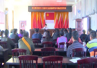 瑞丽市委书记龚云尊深入弄岛镇宣讲党的十九届四中全会精神