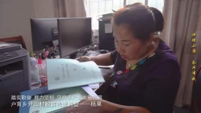 视频 | 【决胜小康·奋斗有我 云宣讲】杨果的勤劳脱贫路
