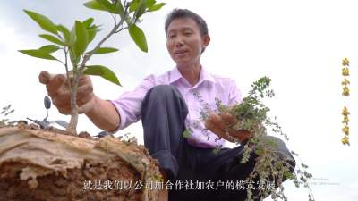 视频 | 【决胜小康·奋斗有我 云宣讲】芒岗村的脱贫领头人李光勇