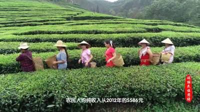 【中华民族一家亲】视频| 同心共筑中国梦