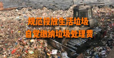 视频|你知道瑞丽每天的生活垃圾是怎么处理的吗?