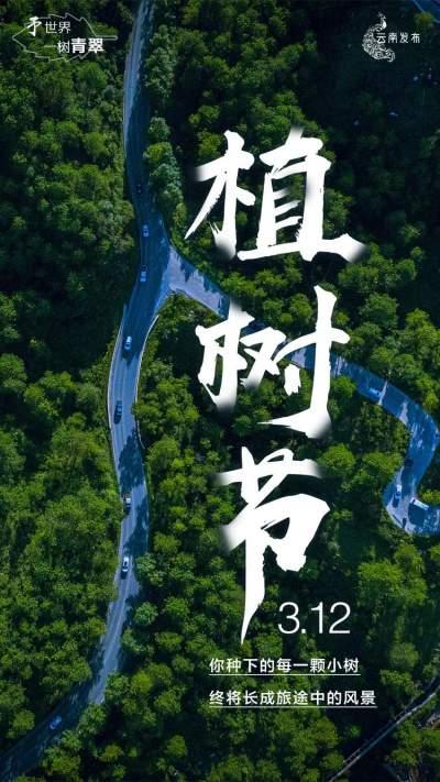 """【植树节】春之伊始 万木生发,所有美好都算""""树""""!"""