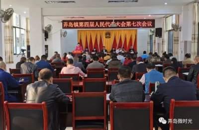 弄岛镇召开第四届人民代表大会第七次会议