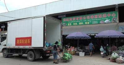瑞麗:當天蔬菜,當天配送,居民生活物資有保障