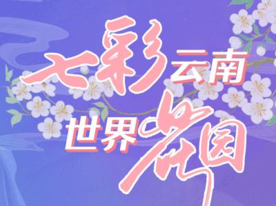 """""""七彩云南 世界花园""""第十七届深圳文博会网络专题"""