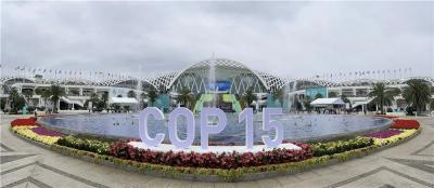 高清大图带你直击COP15!