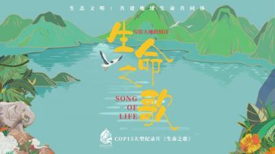 《生命之歌》镜头背后的故事:爬冰卧雪,穿林跨河,用生命致敬生命
