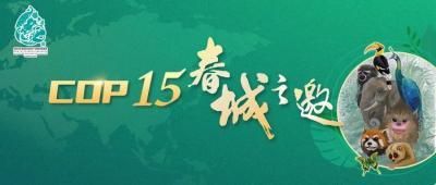 COP15云南宣传片发布!《云南密码》为您解密云南