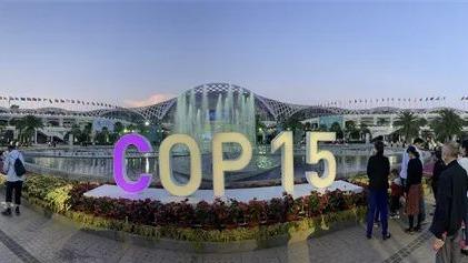 """【cop15】全球连线 探访COP15生物多样性室外展览展示项目""""扶荔宫"""""""