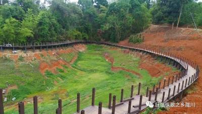边疆党建长廊项目推进,助力龙江更美丽