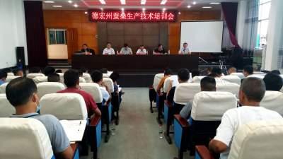 德宏州蚕桑生产技术培训会在陇川县召开