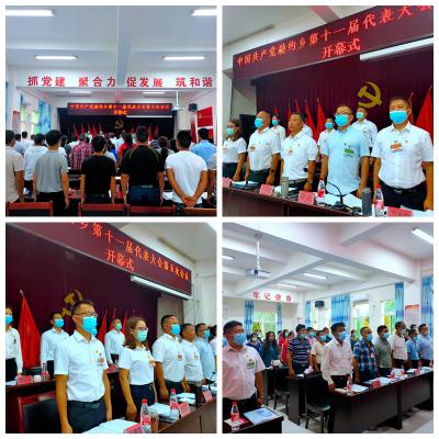 中国共产党勐约乡第十一届代表大会第五次会议隆重召开
