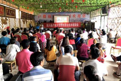 县农技推广中心联合猕猴桃协会开展技术培训