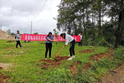 县委统战部民宗局开展妇女儿童义务植树活动