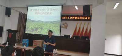 陇川县总工会联合德宏正信公司开展种桑养蚕技能培训