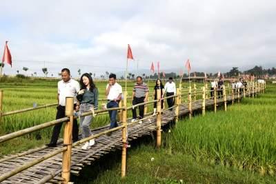 """协商建言  助力""""中国最美乡村""""建设"""
