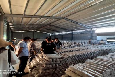 县工业和商务科技局开展电子商务农产品专题调研