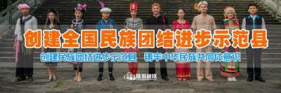 """""""大国点名 没你不行"""" ——陇川县积极开展人口普查宣传工作"""