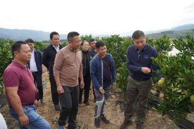 卫岗到陇川调研龙江水库生态环境保护及产业发展工作