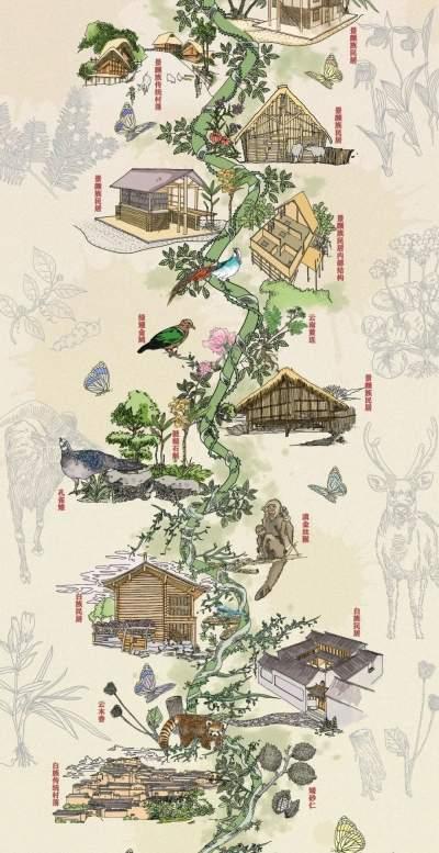 手绘长卷:云南野生动植物和民族民居在一起是什么样子?