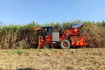 保生产 促发展 为蔗农排忧解难