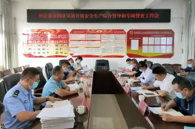 州安委办到章凤镇开展安全生产综合督导并召开专项督查工作会