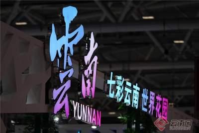 【高清组图】第十七届深圳文博会开幕 云南展区精彩亮相