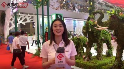 第十七届深圳文博会闭幕 云南展团向您发出COP15之邀