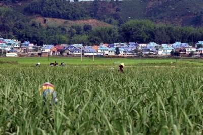 云南要打造30个边境小康示范村 每村总投入不低于1000万元