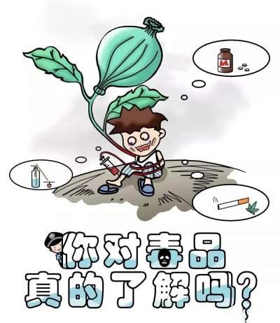 Q版漫画带你轻松学习禁毒知识