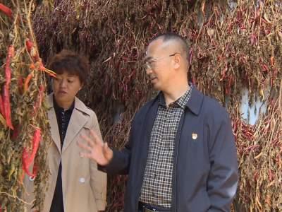 丘北县政协对全县辣椒产业进行专题调研