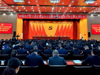中国共产党文山壮族苗族自治州第九届委员会第十次全体会议公报