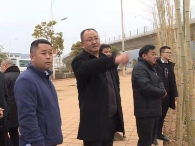 杨波专题调研轨道交通4号线项目建设情况
