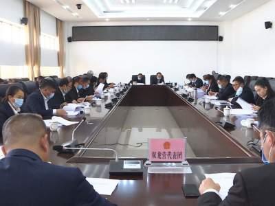聚焦两会丨县第十七届人民代表大会第五次会议进行分团审议