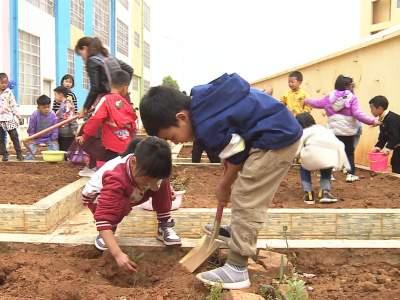 春风十里 绿意萌萌 | 看,丘北的幼儿植树忙!