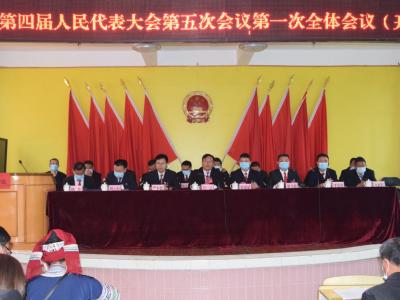 丘北双龙营镇第四届人民代表大会第五次会议胜利召开