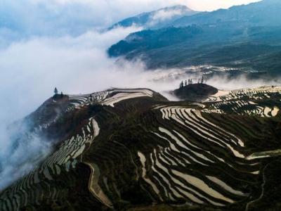 雕在大地上的诗行——世界文化遗产哈尼梯田生态故事