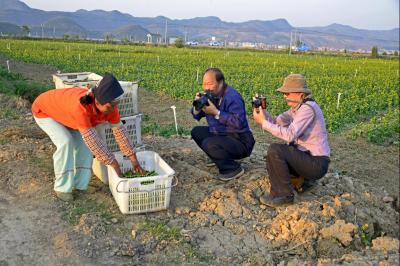 省摄影家协会主席刘明到丘北为省摄协会员培训班学员授课并采风