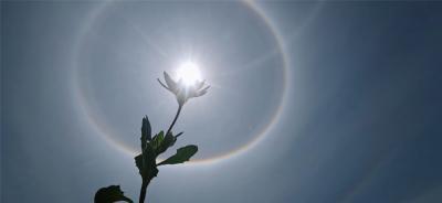 丘北今天的绝美日晕景象,惊艳到你了吗?
