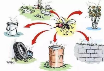 预防夏季传染病风险提示之三:常见虫媒传染病