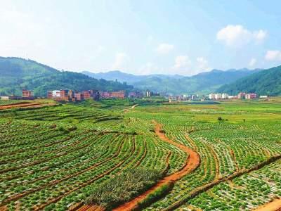 丘北被纳入全国绿色种养循环农业试点县,中央财政支持