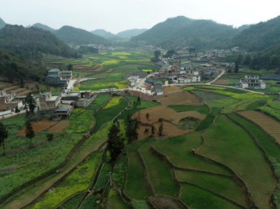 """文山州探索""""四模式""""助力乡村振兴促农增收"""
